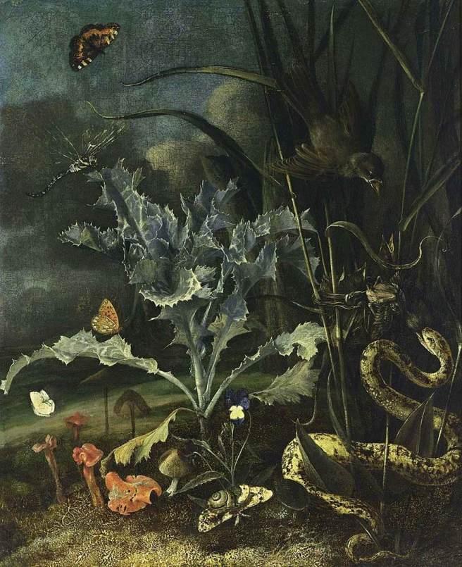 Otto_Marseus_van_Schrieck_-_A_Forest_Floor_Still-Life_-_WGA21061